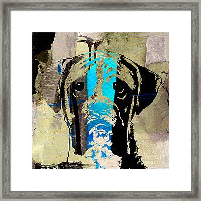 Boxer Framed Print by Marvin Blaine