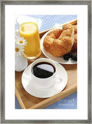 Breakfast  Framed Print by Elena Elisseeva