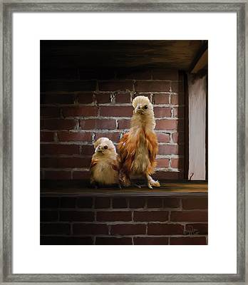 4. Brick Chicks Framed Print