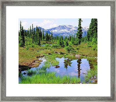 Canada, British Columbia Framed Print