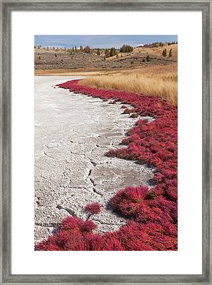 Canada, British Columbia, Kamloops, Lac Framed Print