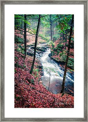 Chesterfield Gorge New Hampshire Framed Print by Edward Fielding