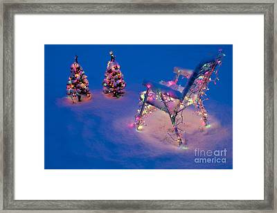 Christmas Lights On Trees And Lawn Chair Framed Print by Jim Corwin