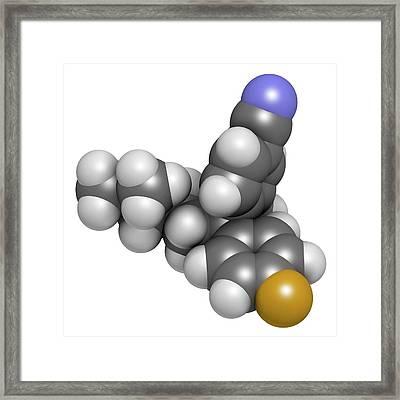 Citalopram Anti-depressant Drug Molecule Framed Print by Molekuul