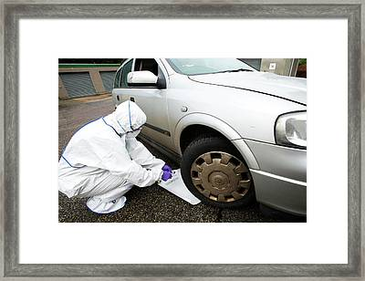 Collecting Forensic Evidence Framed Print by Louise Murray