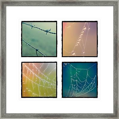 4 Color Web Droplets Framed Print