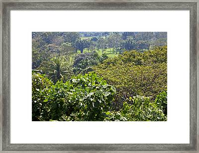 Comalcalco Archeological Ruins Framed Print by Ellen Thane