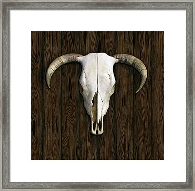 Cow Skull Framed Print