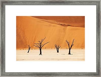 Dead Vlei In Namib Desert Framed Print by Juergen Ritterbach