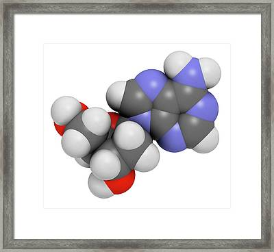 Deoxyadenosine Nucleoside Molecule Framed Print