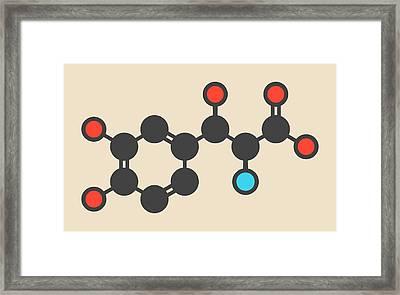 Droxidopa Hypotension Drug Molecule Framed Print