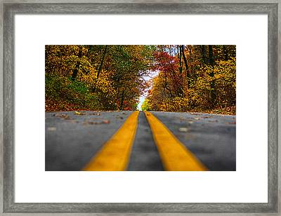 Fall Colors Framed Print by Jerome Lynch