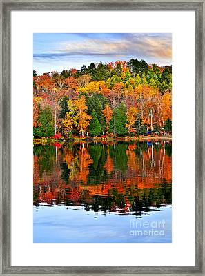 Fall Forest Reflections Framed Print by Elena Elisseeva