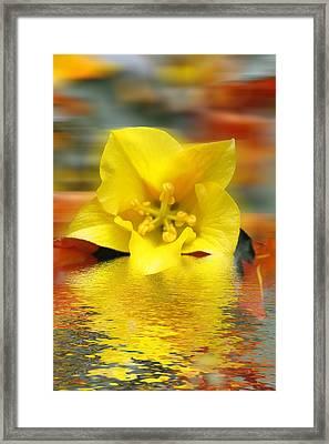 Floral Fractals And Floods Digital Art Framed Print