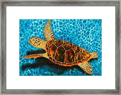 Green Sea Turtle Framed Print by Daniel Jean-Baptiste