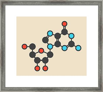 Guanosine Purine Nucleoside Molecule Framed Print