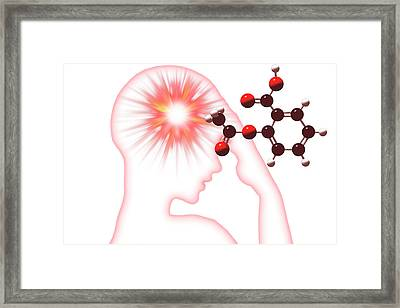 Headache Framed Print by Carol & Mike Werner