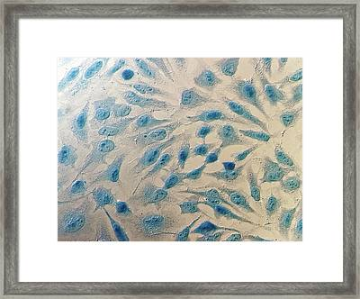 Hela Cells Framed Print by Heiti Paves