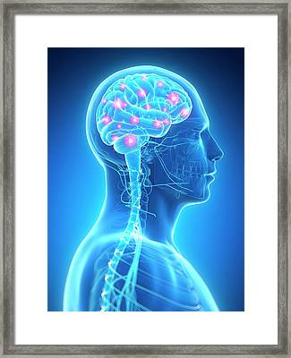 Human Brain Activity Framed Print