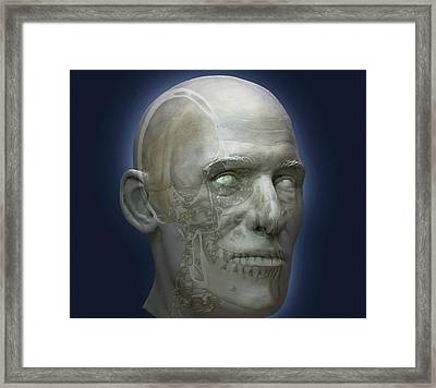 Human Head Framed Print