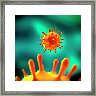 Influenza Virus (h1n1) Framed Print