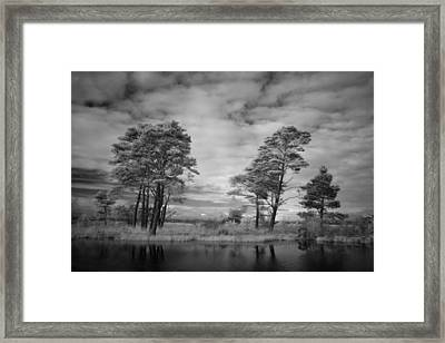 Infrared Picture Of The Nature Area Dwingelderveld In Netherlands Framed Print