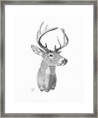 Iowa Trophy Framed Print by Cody Thorne