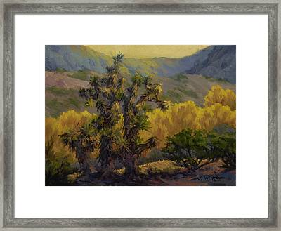 Joshua Trees And Cottonwoods Framed Print