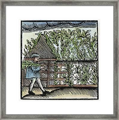 Jewish Holiday, 1663 Framed Print