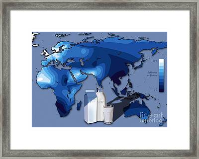 Lactose Tolerance, Eurasia And Africa Framed Print by Art for Science