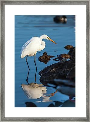 Lake Murray San Diego, California Framed Print by Michael Qualls