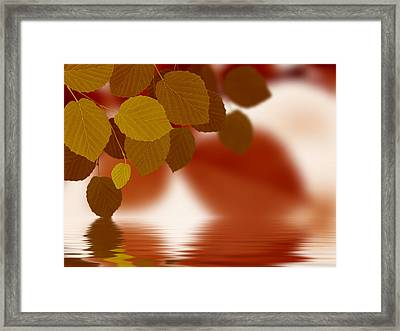 Leaves Reflecting In Water Framed Print