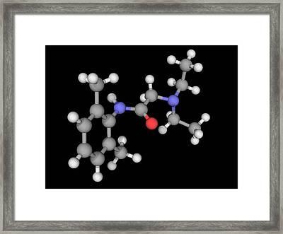 Lidocaine Drug Molecule Framed Print by Laguna Design/science Photo Library