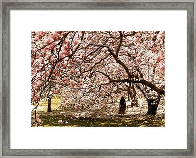 Magnificent Magnolia Framed Print by Jessica Jenney
