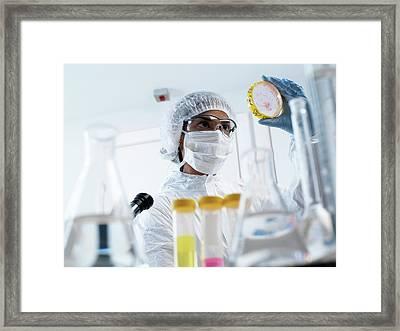 Microbiology Framed Print