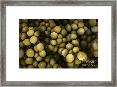 Microscopic View Of Staphylococcus Framed Print by Stocktrek Images