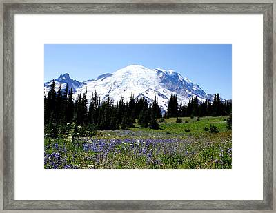 Mt. Rainier Framed Print by Jerry Cahill