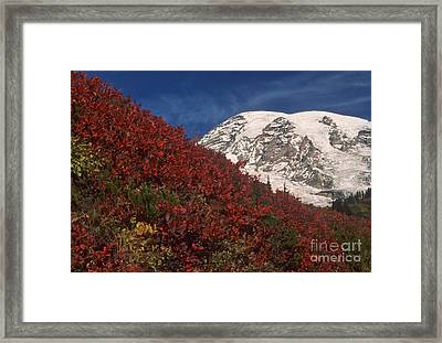 Mt. Rainier Framed Print by Richard and Ellen Thane