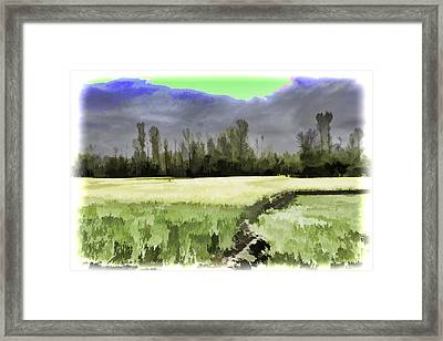 Mustard Fields In Kashmir Framed Print