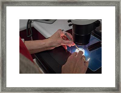 National Laboratory For Genetic Resources Preservation Framed Print by Jim West/science Photo Library