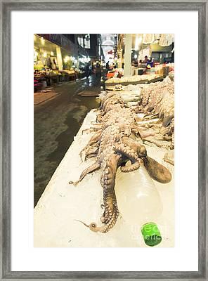 Octopus Sale In Korea Market Framed Print by Tuimages