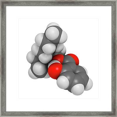 Octyl Salicylate Sunscreen Molecule Framed Print by Molekuul