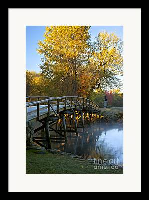 New England Fall Shots Framed Prints