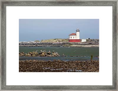 Or, Oregon Coast, Bandon, Coquille Framed Print