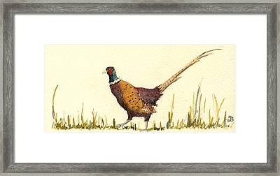 Pheasant Framed Print by Juan  Bosco