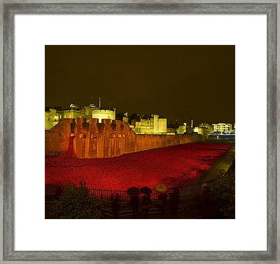 Poppies Tower Of London Night Framed Print