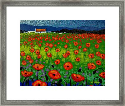 Poppy Field Framed Print by John  Nolan