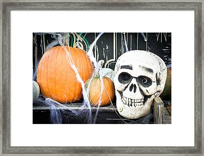 Pumpkins Framed Print by Tom Gowanlock