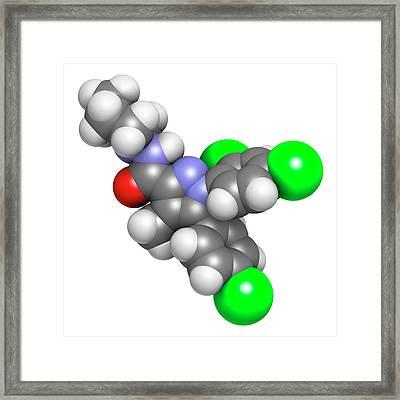 Rimonabant Obesity Drug Molecule Framed Print by Molekuul