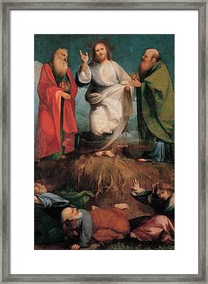 Sacchis Giovanni Antonio De Known As Il Framed Print